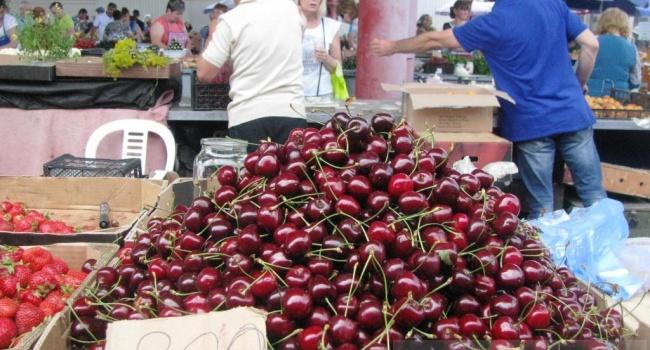 ЗМІ порівняли вартість фруктів у Криму та Херсонській області