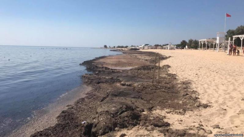 На Крым свалилась вонючая напасть