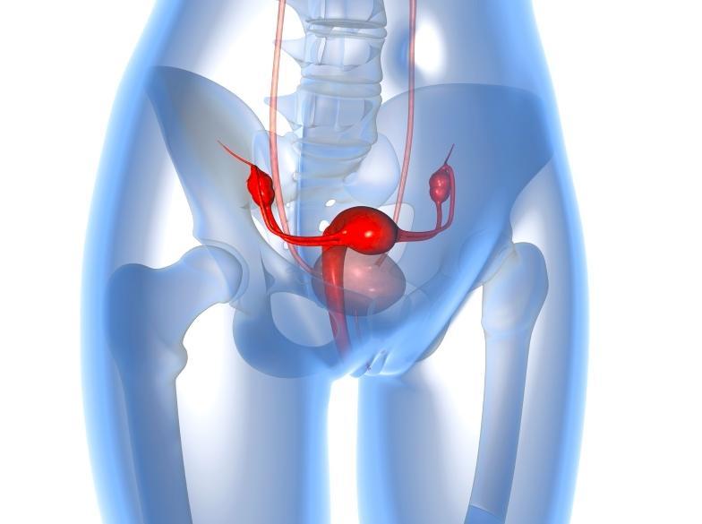 Всё о медицинской гинекологической операции гистерэктомия