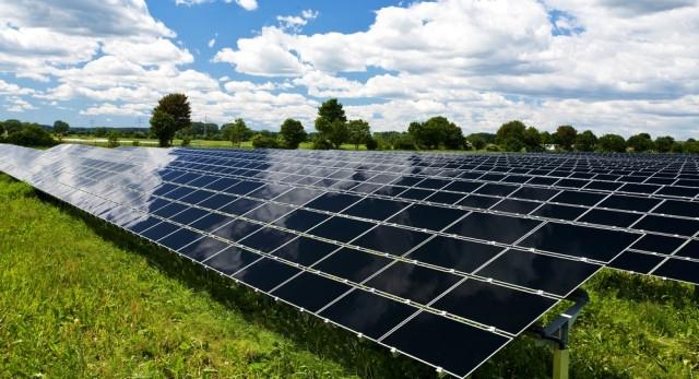 Солнечная панель Perlight Solar PLM-260P-60