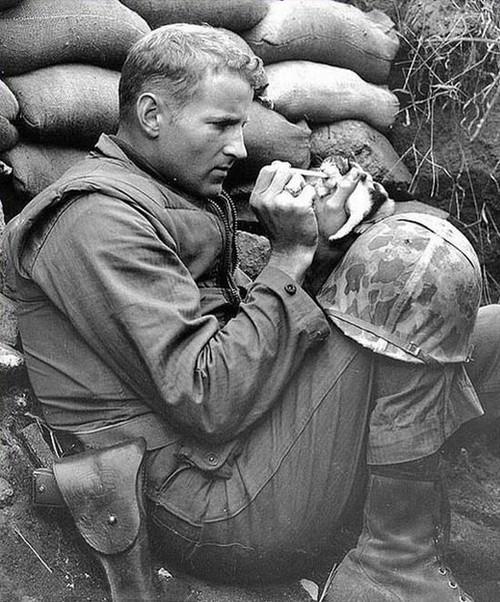 Эта фотография, которая довела солдата до трибунала, а затем спасла его