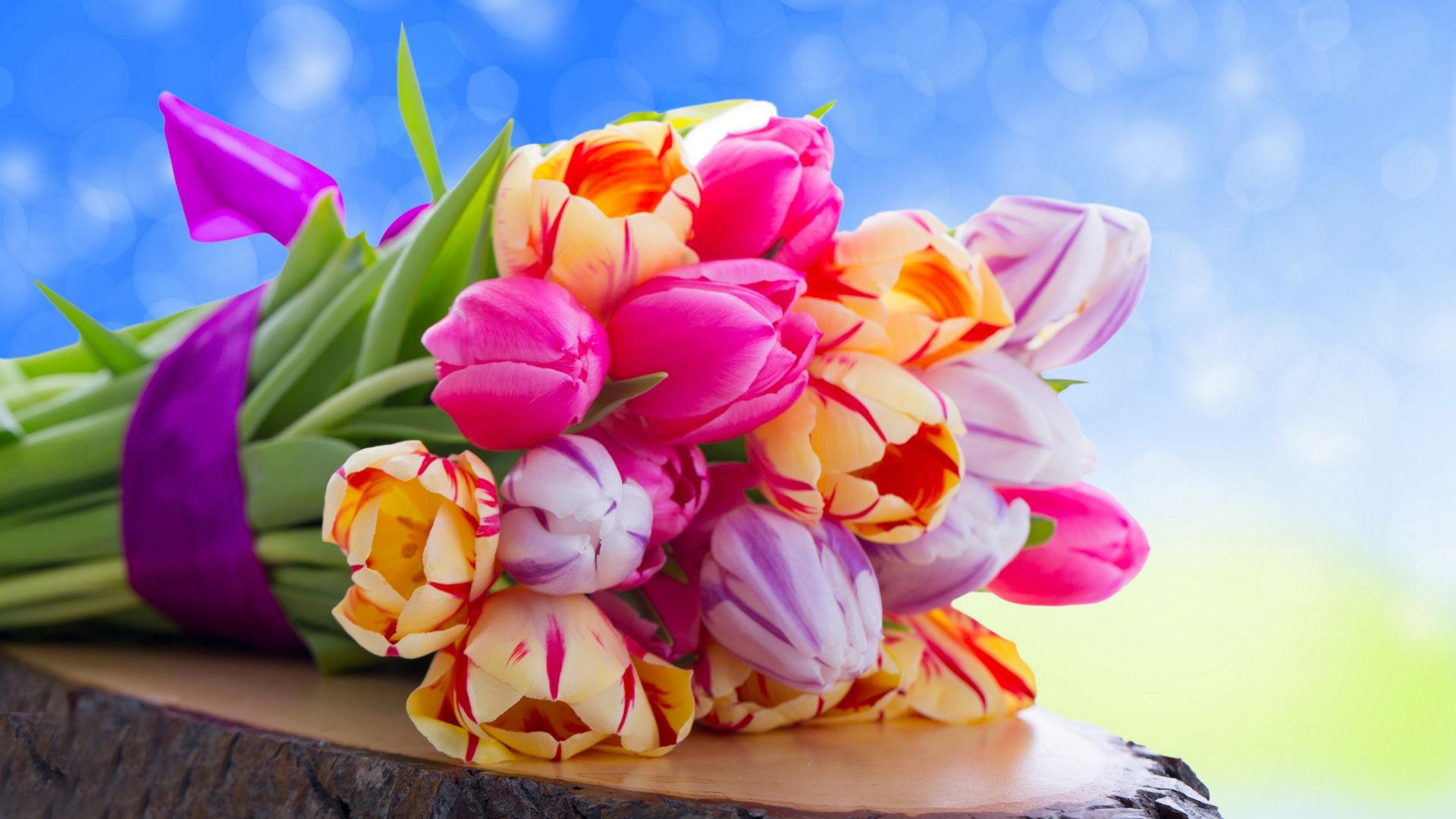 Самые красивые цветы планеты