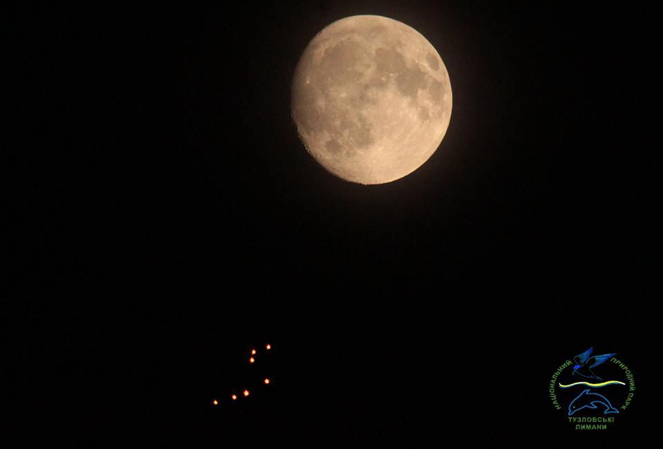Инопланетяне заинтересовались Одесчиной: фото