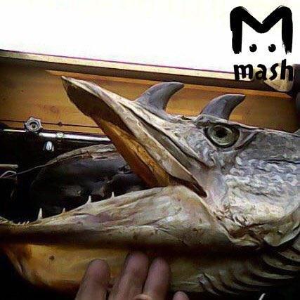 В России поймали рыбу, похожую на дракона: опубликовано жуткое фото