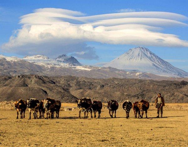 Пришельцы облюбовали гору Арарат. ФОТО