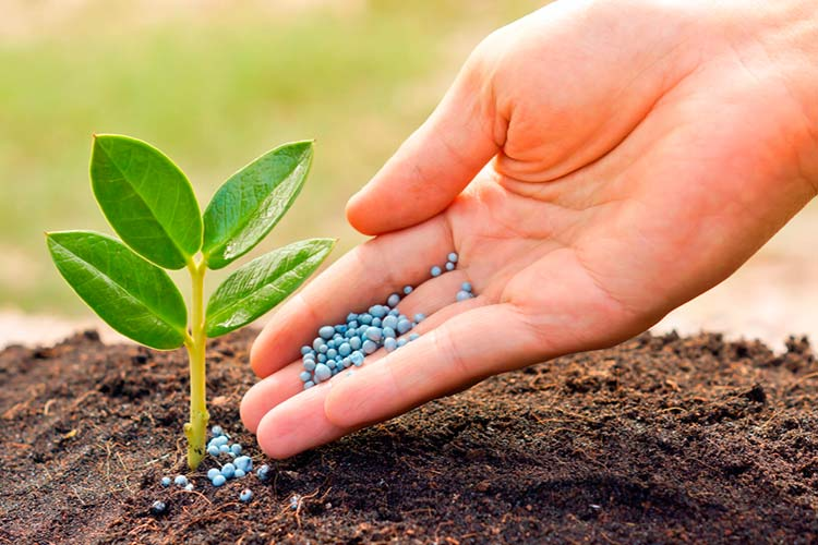 Защитные средства и удобрения для сельхозкультур