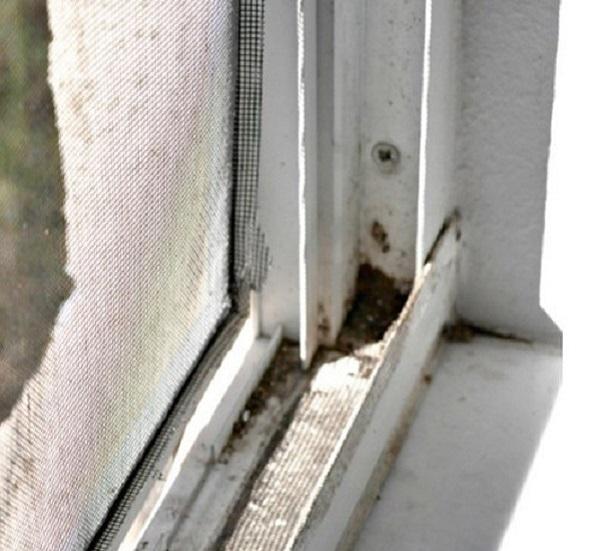 Научись быстро мыть окна: есть простой трюк
