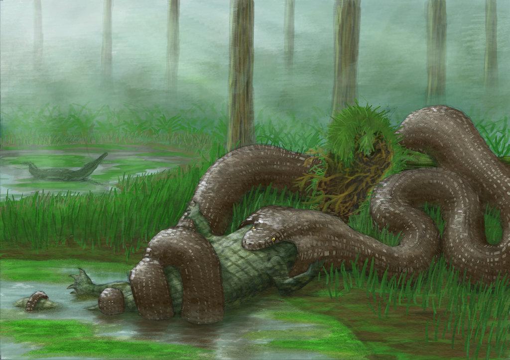 Могла съесть слона и жирафа: найдена самая огромная змея на планете