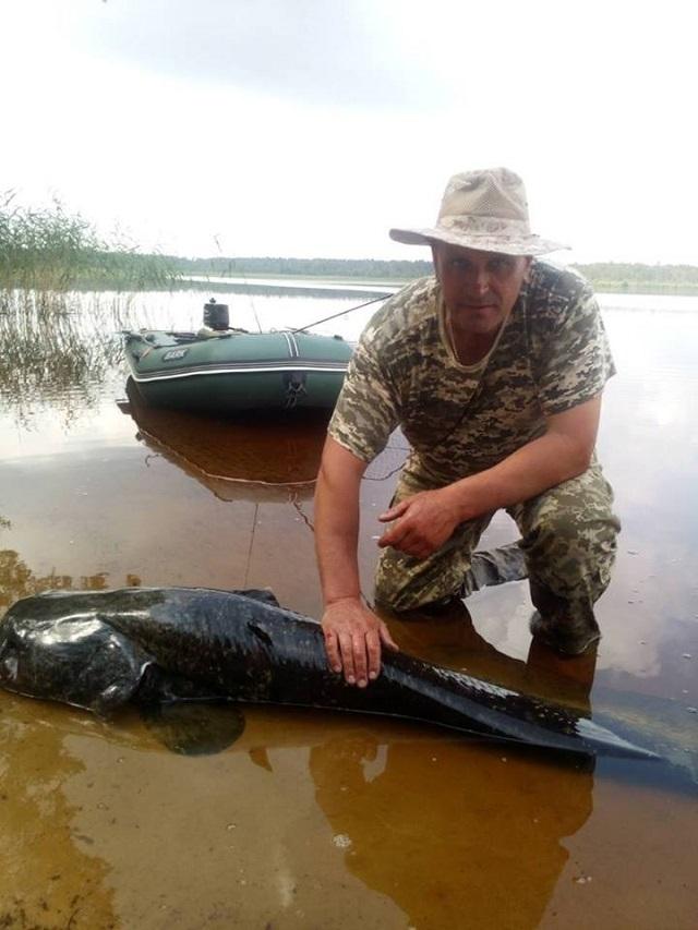 Украинский рыбак поймал на удочку гигантское усатое чудище: фото