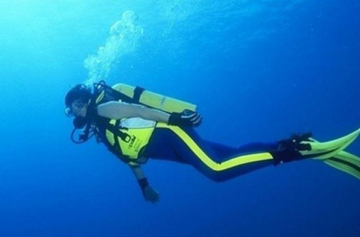 Сенсация! Дайвер встретил под водой огромного морского монстра. ВИДЕО