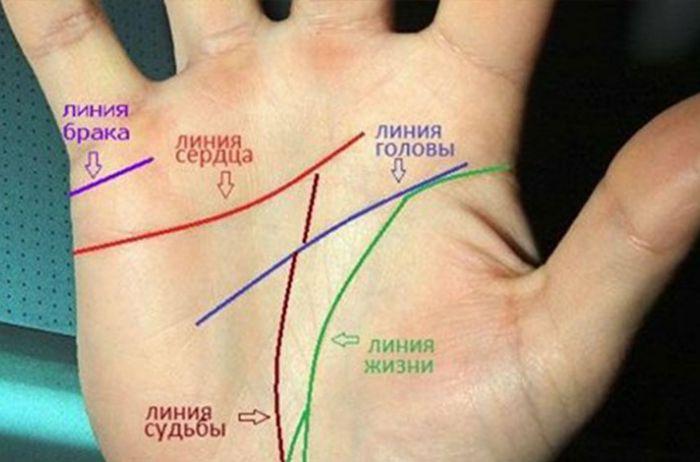 Посмотрите на свои руки: то, как расположена линия сердца, определяет вашу жизнь