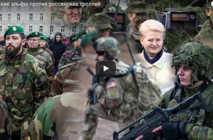 НАТО не поможет: еще одну страну призвали готовиться к вторжению России