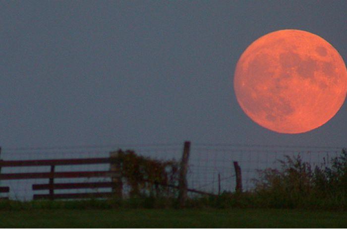 Кровавая луна: тотальное затмение превратит вас в настоящего зверя