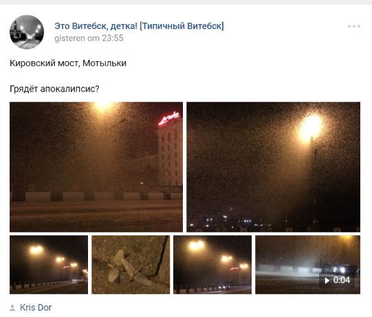 Грядет апокалипсис? Город в Беларуси атаковали крылатые созданья ночи. ФОТО