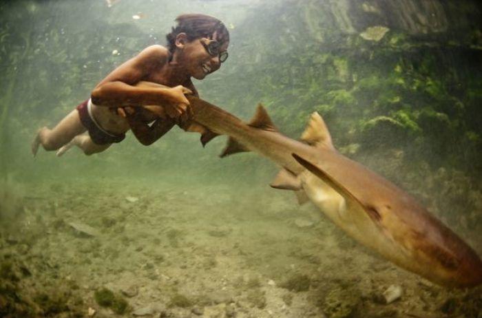 """Разгадана загадка """"морских цыган"""", которые могут нырять на глубину 70 м"""