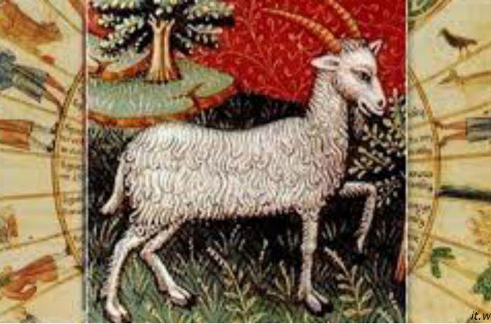 Почему Козерог – самый умный знак Зодиака