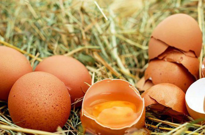 Медики подсказали, кому нельзя есть яйца