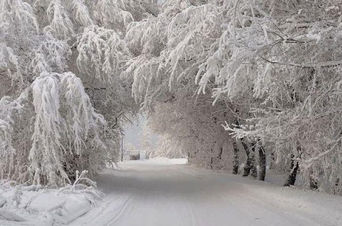 До 30 сантиметров снега: Украину накроет мощная стихия