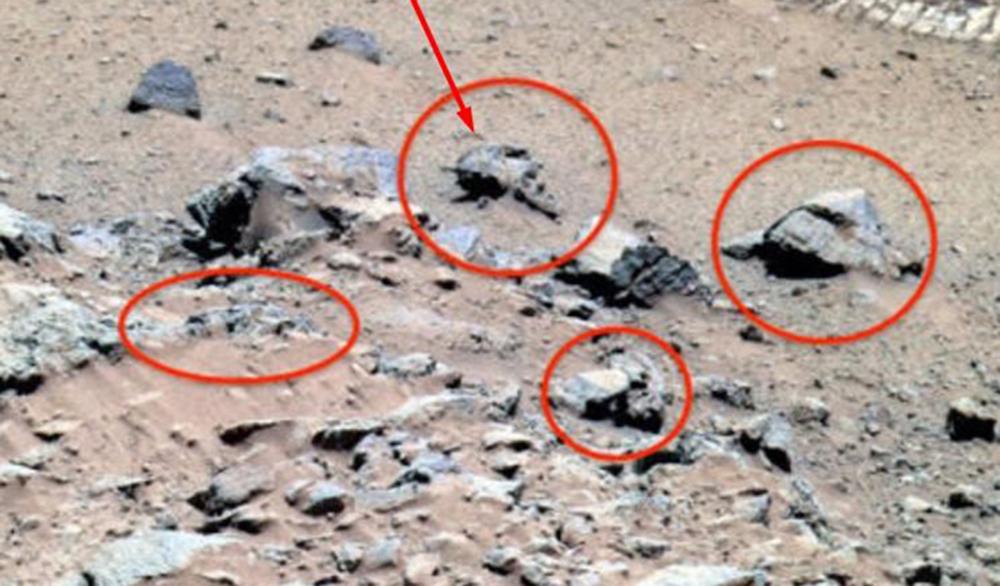 На Марсе нашли череп воина-пришельца. ФОТО