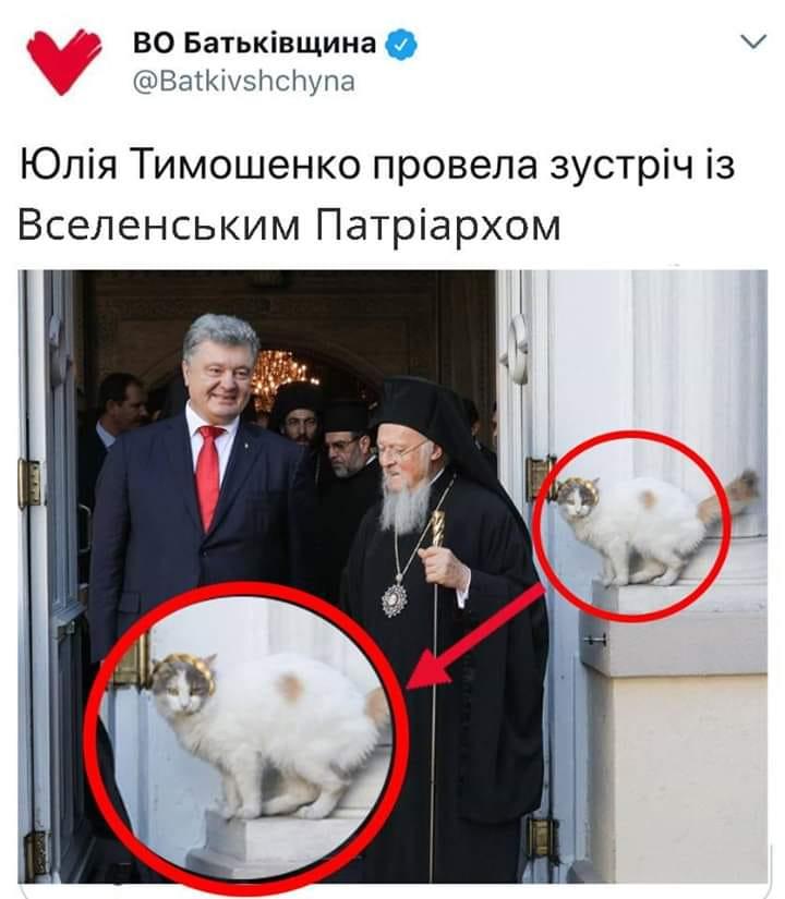 Наглый кот стал ключевой фигурой на ФОТО Порошенко с Варфоломеем