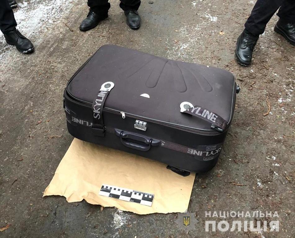 Труп в чемодане: расправа над красавицей обрастает подробностями 18+