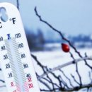 Синоптики предупредили украинцев о морозах: актуальный прогноз