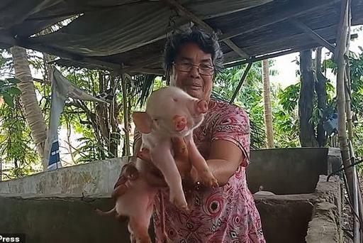 Жители в шоке: на Филиппинах родился трехглазый мутант