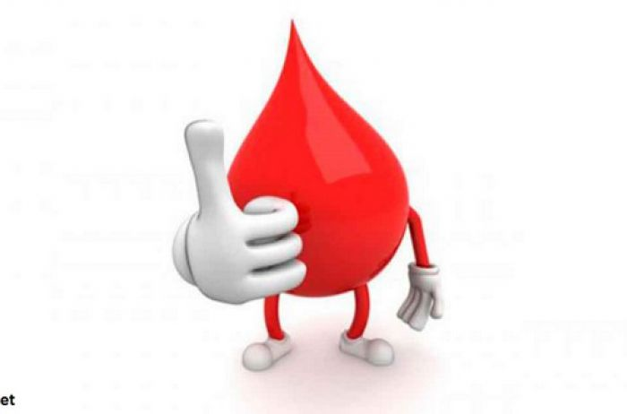 Кардиолог рассказал, какие 7 продуктов разжижают кровь лучше всего