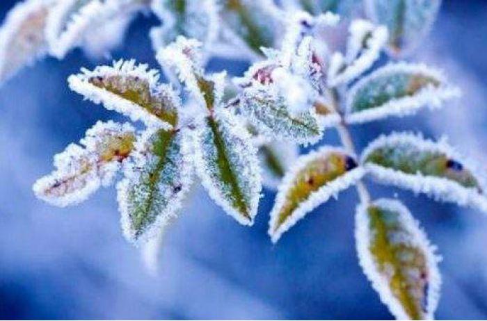 Возможны даже заморозки:  о погоде на ближайшие дни