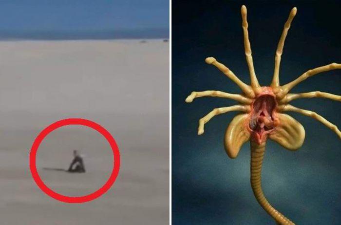В мексиканской пустыне заметили пришельца. ВИДЕО