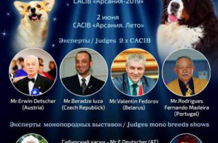 Николаев готовится к открытию двух масштабных выставок собак международного уровня