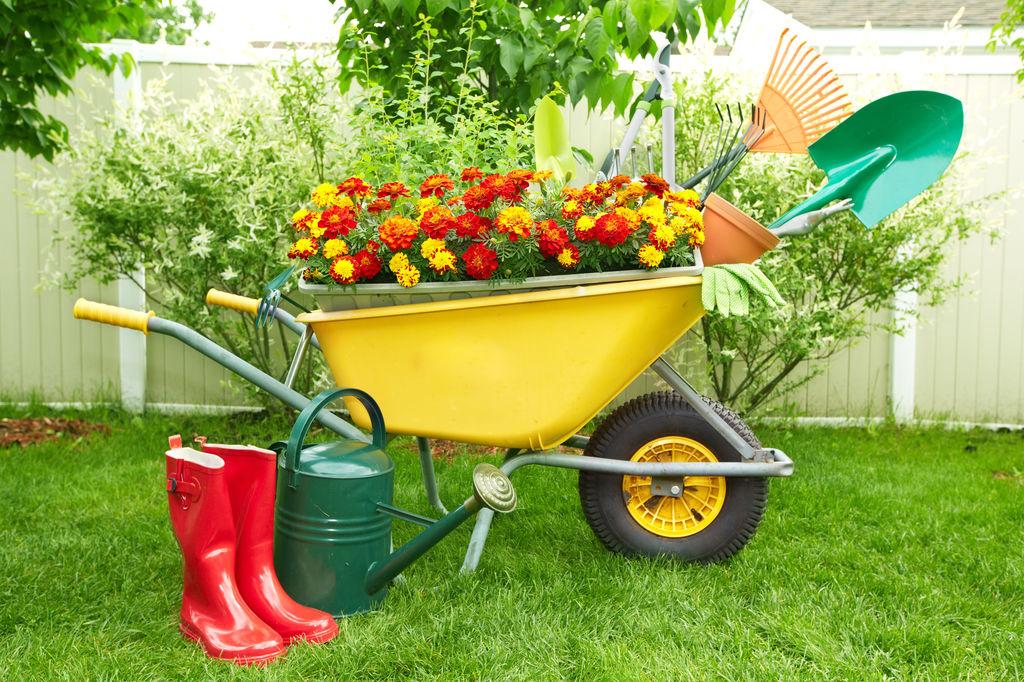 Лучший производитель садовой техники и инвентаря