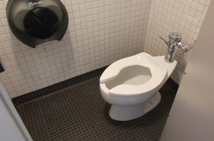 Стало известно, почему в американских туалетах не ставят ершики