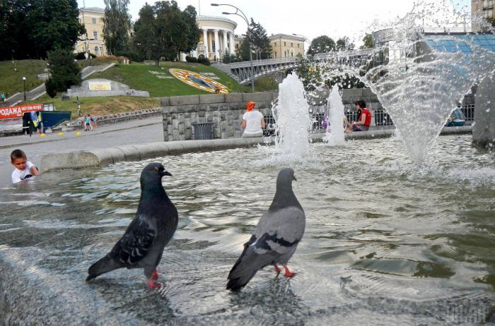 Жара атаковала Украину с новой силой. Свежий прогноз погоды
