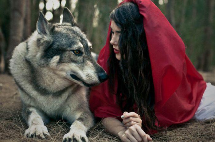 Мужчины каких знаков Зодиака волки-одиночки: ни одна женщина не сможет приручить такого зверя