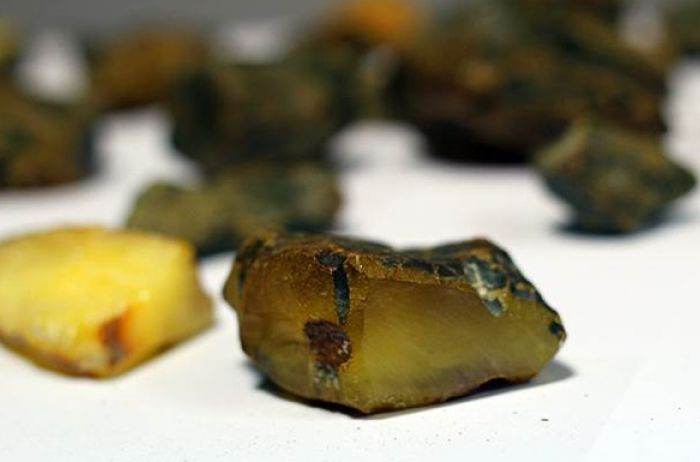 Кабмин намерен ввести уголовную ответственность за экспорт янтаря
