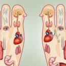 Как правильно делать массаж ног: полезная ВИДЕОинструкция