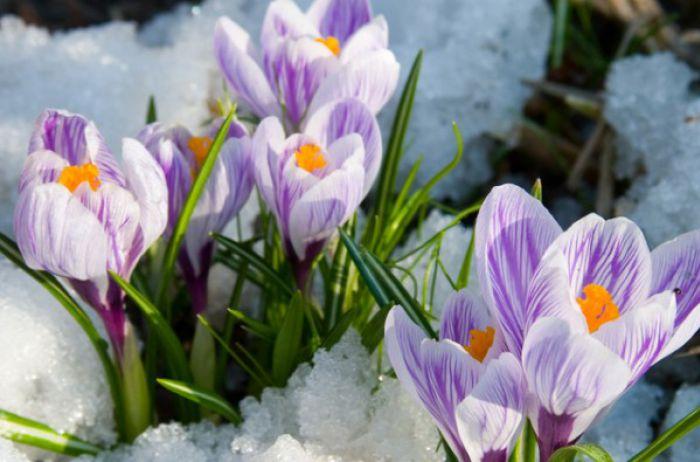 Стало известно, сколько выходных ожидает украинцев в марте
