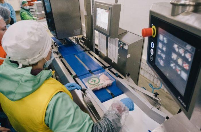 Производитель курятины «Эпикур» признался в использовании антибиотика, - СМИ