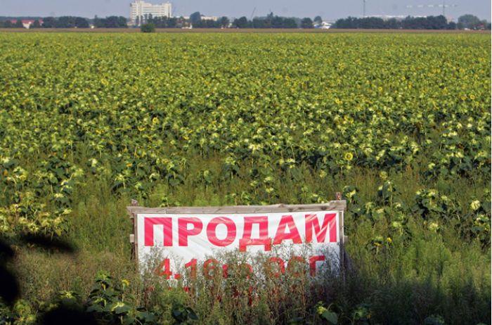 Слуги народу сподіваються провести референдум по продажу землі до кінця 2020 року