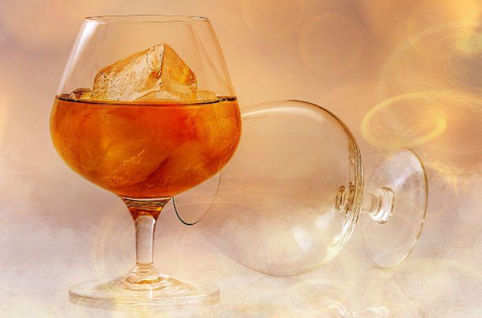 Названо время, за которое мозг полностью восстанавливается после выпивки