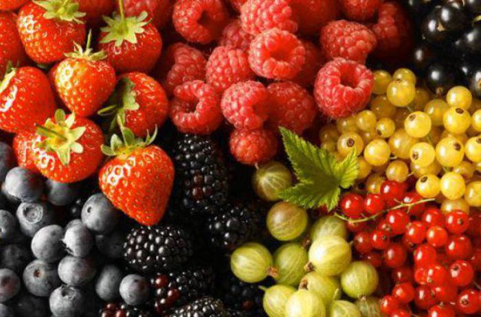 Эта ягода способна защитить от рака крови