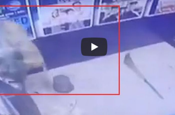Наглая обезьяна взломала банкомат и убежала. ВИДЕО