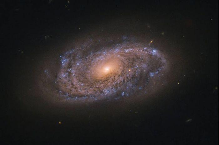 Астрономы: на Землю поступают радиосигналы с непонятным ритмом
