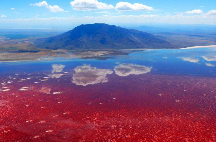 В Африке находится самое жуткое озеро на Земле