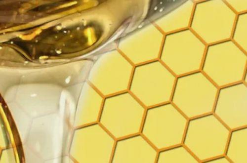 Семь главных свойств меда и кому нельзя его есть
