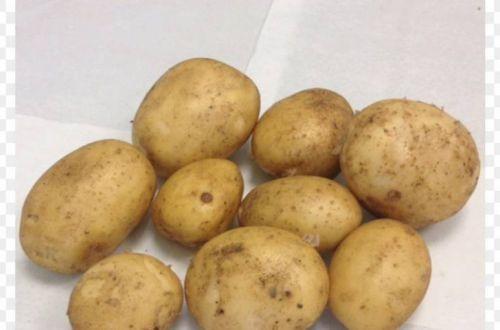 Эти блюда из картофеля считаются самыми вредными для организма