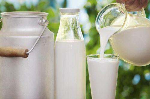 Ученые рассказали, кому вредно пить много молока