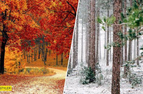 Синоптик рассказал, будет ли в Украине зимой снег