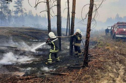 Луганщина в огне: спасатели не могут потушить пожары. ВИДЕО